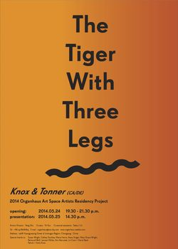 20140818153626-the_tiger_with_three_legs_poster_eng