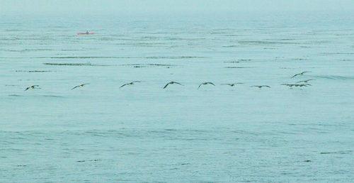 20140826054251-saar_adrift