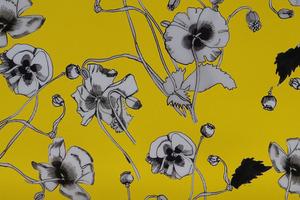 20141220064234-papaver_yellow_tahir