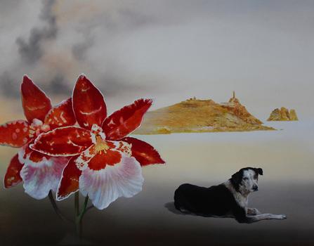 20140913120651-orchidee_300dpi