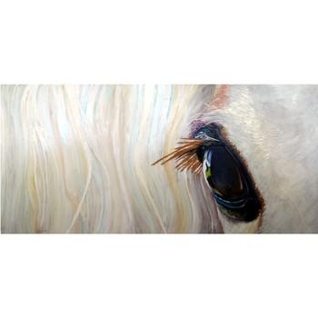 20141025210919-horseeye