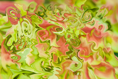 20141111220247-abstractions-of-leaves