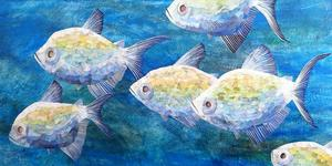 20141120003543-sixfish