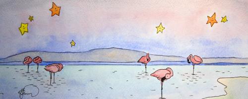 20141125173027-flamingos