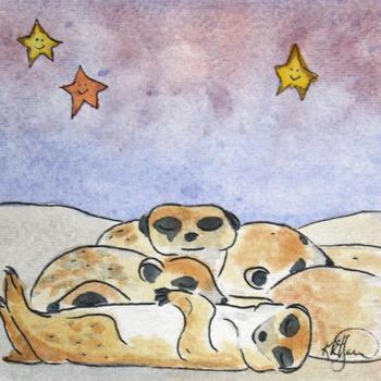 20141125173034-meerkats