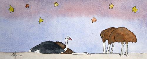 20141125173039-ostrich