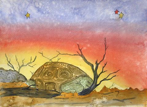 20141125173237-tortoise