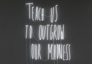 20141201122640-teach_us_to_outgrow_our_madness_alfredo_jaar