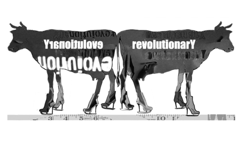 20141203202638-evolutionary_cows_hesterglock_press_final_grey