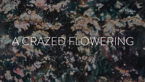 20141204121130-a_crazed_flowering