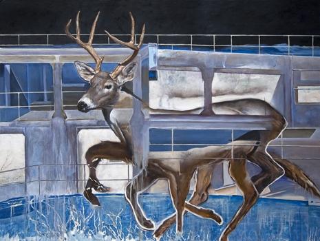 Urban-deer