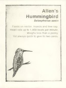20141210231140-humming_bird_1000