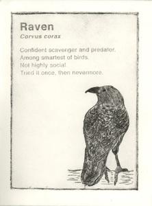 20141210231144-raven_1000