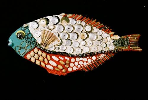 20150207225110-spotlight_parrot_fish_-_intermediate_phase__1_