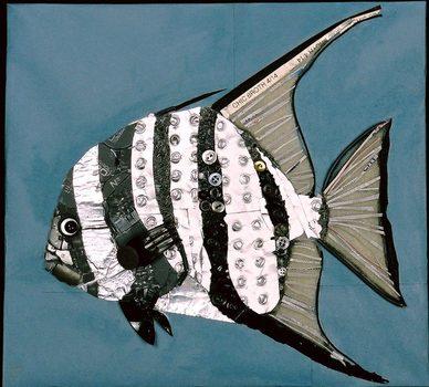 20150207225529-atlantic_spadefish_1