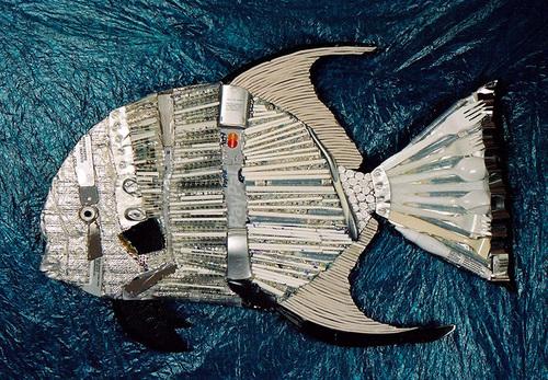 20150207225530-atlanta_spadefish_-_resized