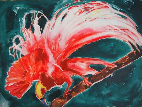 20150210205149-bird_of_paradise__scarlet_