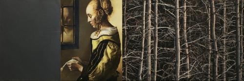 20150211235535-untitled_06__vermeer-1657_steel_o_c_original_photo__12_x_36_inch