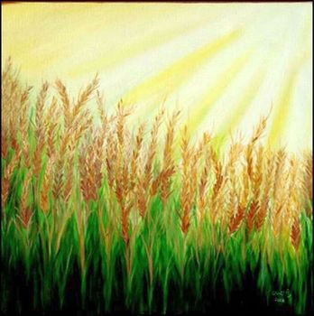 As_cropped20110117201540-paddy_field