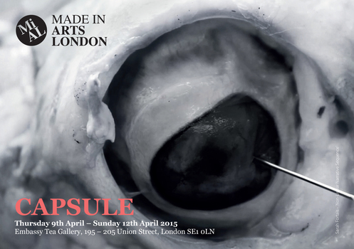 20150218142738-mial_capsule_flyer-1_for_web