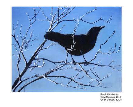 20150221205428-crow_mooning