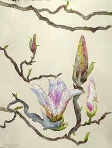 20150314153018-magnolia_blossoms_mixed_media_low