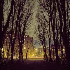 Robert_vizzini_wintercolonnade