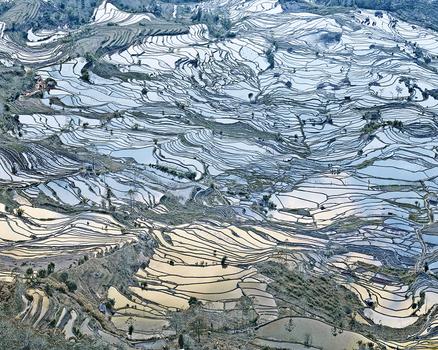 20150407174333-burdeny__david_-_rice-terraces-laohuzui-i-yunnan-china-2013_web