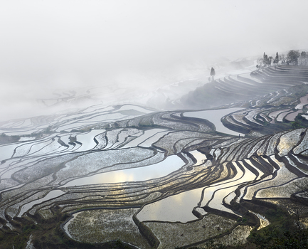 20150407183640-burdeny__david_-_rice-terraces-duoyishu-yunnan-china-2013