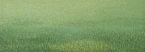 20150413192743-grassland-37_2012_17x47_web