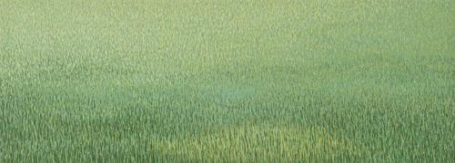 20150413200025-grassland-37_2012_17x47