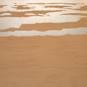 20150424232537-desert_waterlines-6