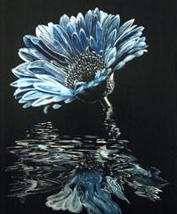 20150503080656-036-1-blue_chrysanthemum