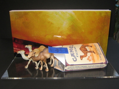 Pack_of_camels