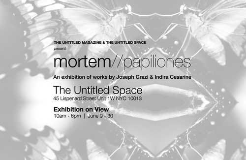 20150614151649-mortem-papiliones_exhibition