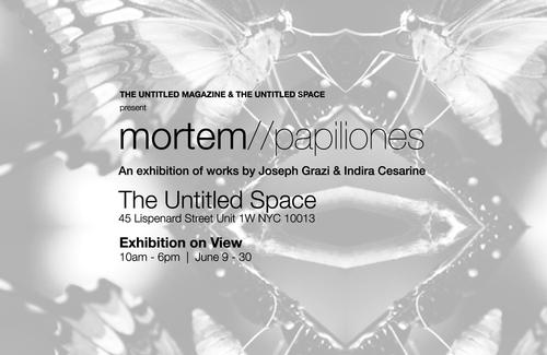 20150614151649-mortem-papiliones_exhibition