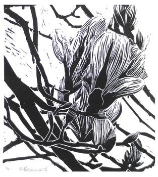 20150707090356-tania_beaumont_magnolia