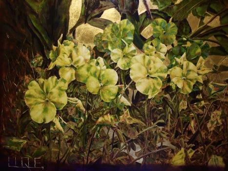 20150720181850-flower_4