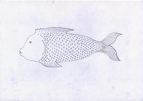 20150724210150-fish-no-1