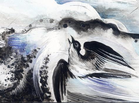 20150725035741-avance-bird