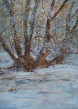 20150814150356-late_winter_s_afternoon_in_yatton_woods_bronte_woodruff_2014