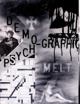 Psychographic__demographic_melt