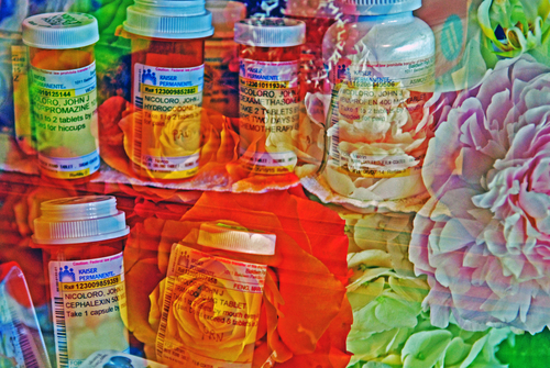 20150817235855-johnny_nicoloro_flowers_from_kato_after_dad_died_and_his_meds