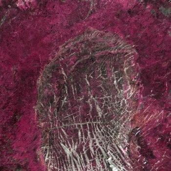 20150827030108-pennies003a-crop1-pink