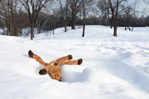 20150908182008-07_may_mm-deer