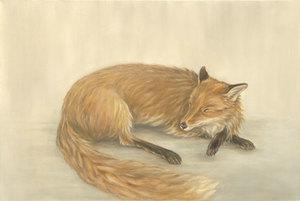 20150913191840-sleeping_fox