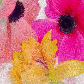 20150915192640-pink_anemones