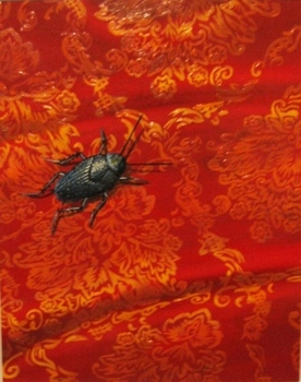 Meg_dwyer_beetle_on_red