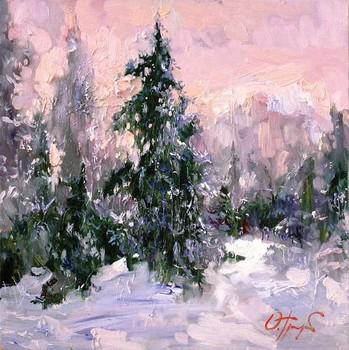 The_winter_sun