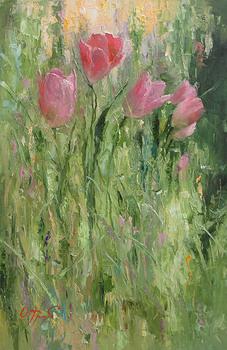 Tulips_in_the_garden